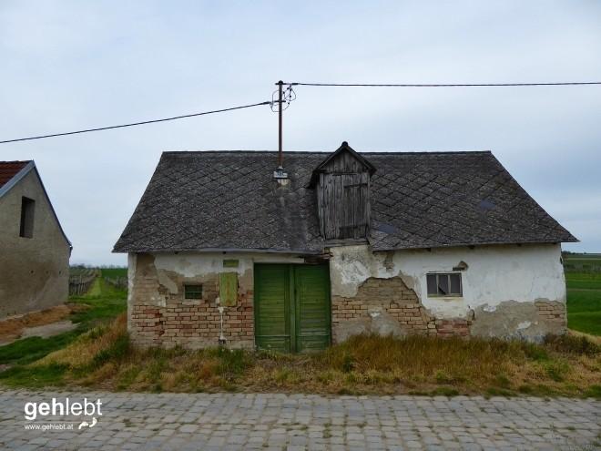 In die Grean gehen im Weinviertel_Blogger-DayTrip (41)