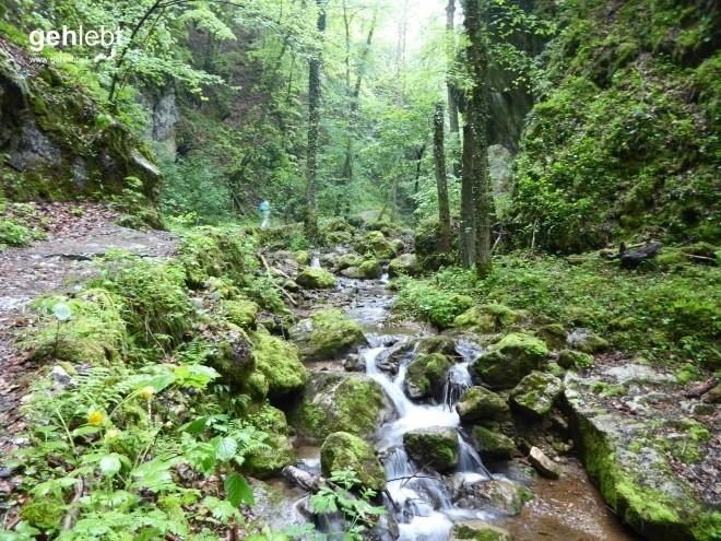 Vier Tage Wiener Alpenbogen - Tag 3 (6)