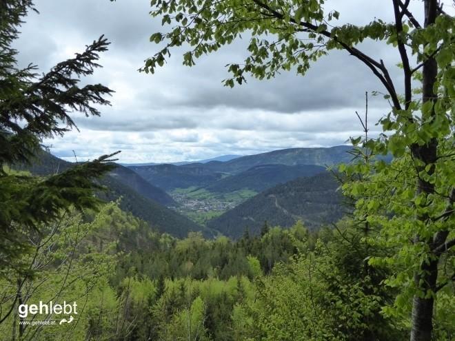 Vier Tage Wiener Alpenbogen - Tag 4 (5)