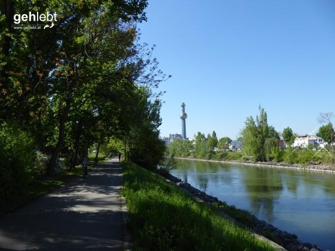 Dem Donaukanal entlang trottend mit Blickrichtung Spittelau.