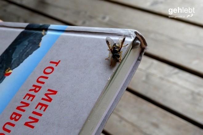 Nationalpark Kalkalpen (6) - Süßes Tourenbuch