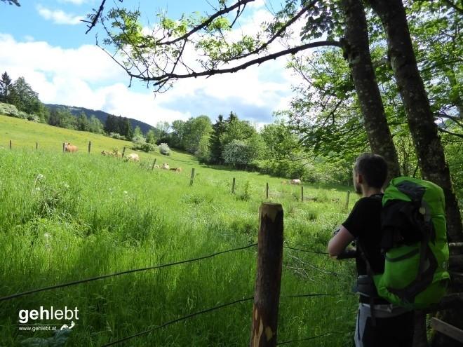 Schneeberg Rax Backstage - Etappe 3 (5)
