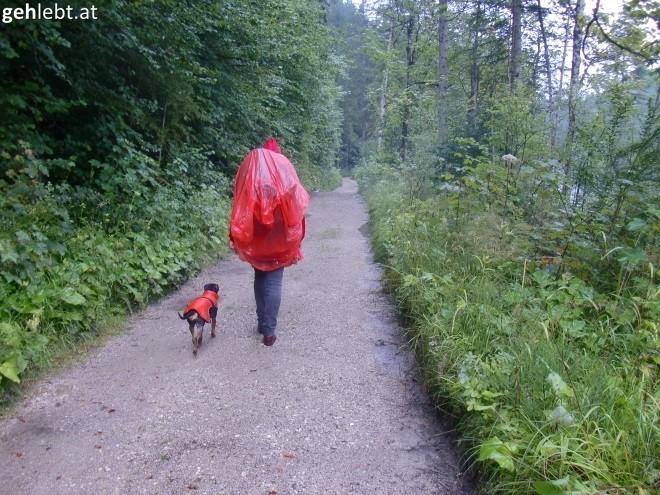 Die erste Weitwandertour startete gleich mal mit Regenschutz.