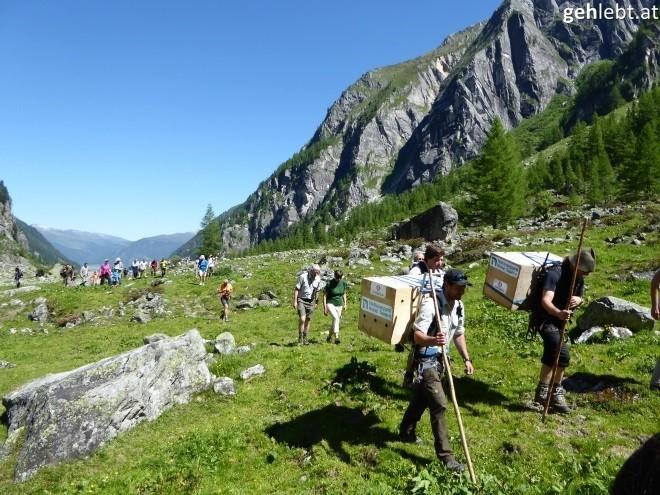 nationalpark-hohe-tauern-bartgeierfreilassung-im-untersulzbachtal-16