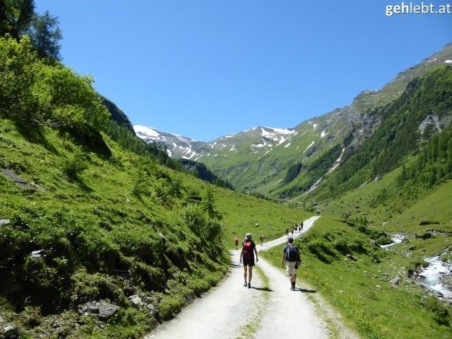 nationalpark-hohe-tauern-wandern-im-tal-der-geier-krumtal-5