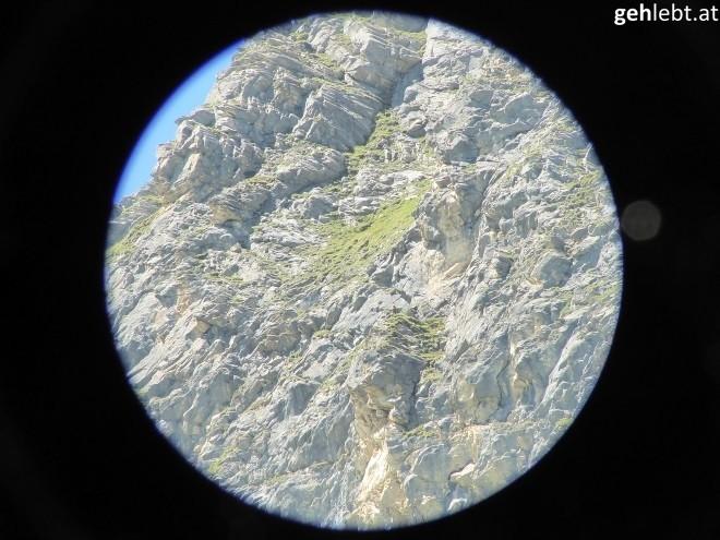 nationalpark-hohe-tauern-wandern-im-tal-der-geier-krumtal-8