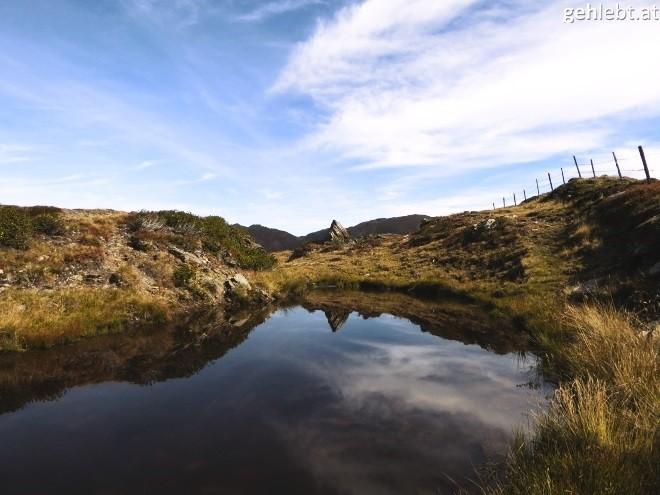 leichte-wandertour-auf-den-muellachgeier-im-pinzgau-13