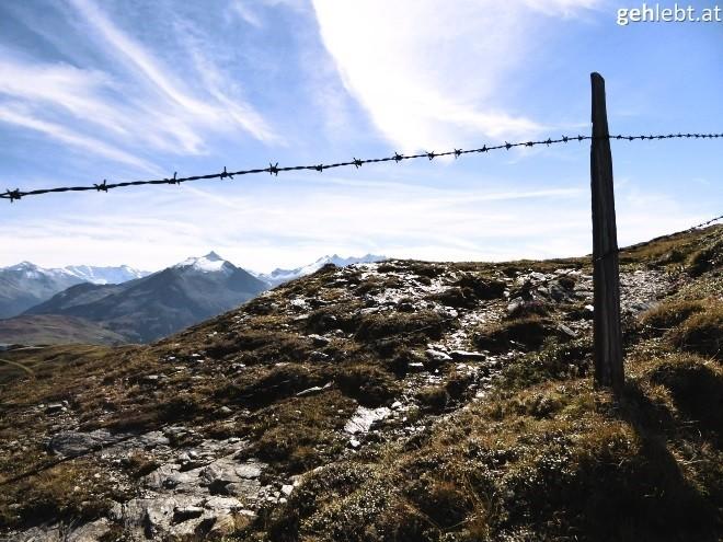 leichte-wandertour-auf-den-muellachgeier-im-pinzgau-17