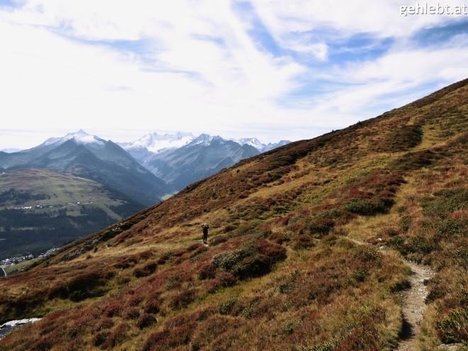 leichte-wandertour-auf-den-muellachgeier-im-pinzgau-9